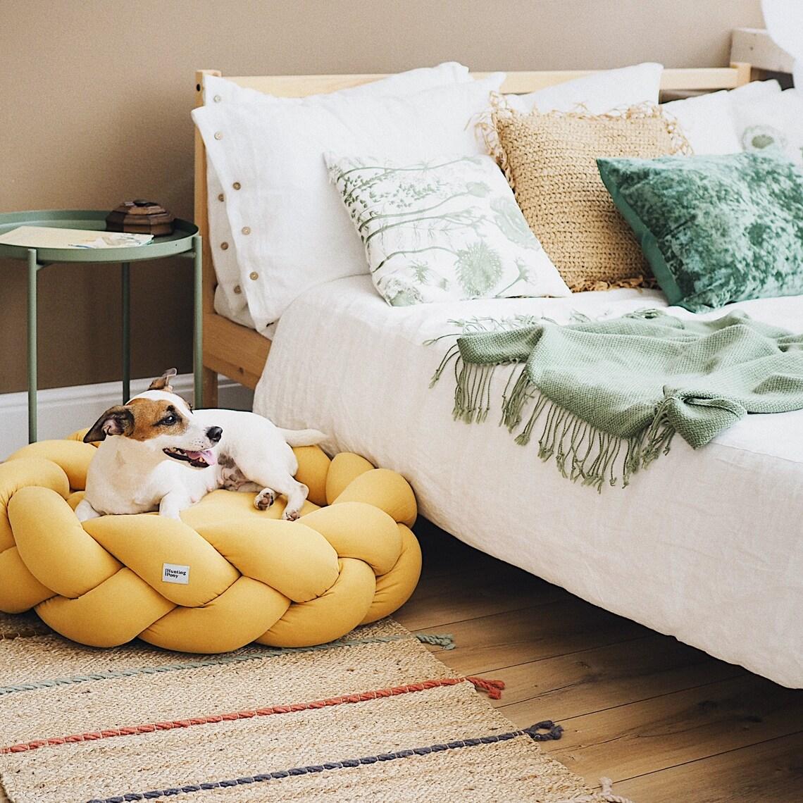 5 tips voor het verhuizen van je huisdieren