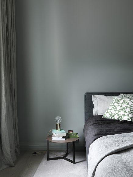 Appartement met mooie grijs groene muren inrichting - Kleur kamer volwassen foto ...
