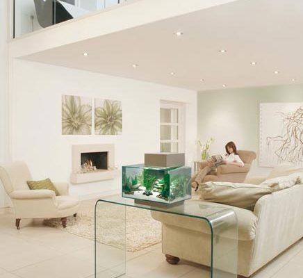 http://www.inrichting-huis.com/wp-content/afbeeldingen/aquarium21-436x400.jpg