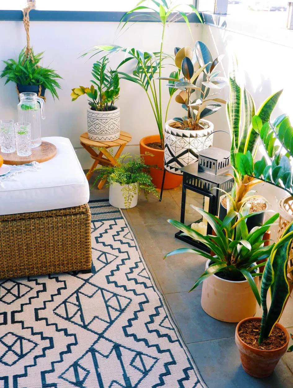 balkon planten shehzeen