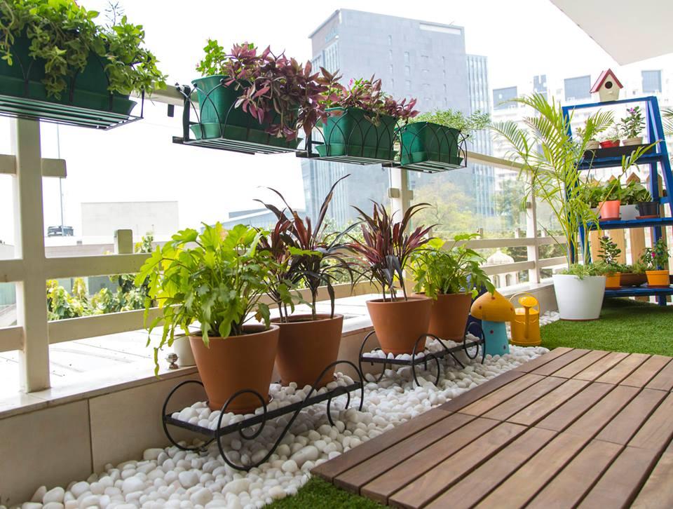 balkon-planten
