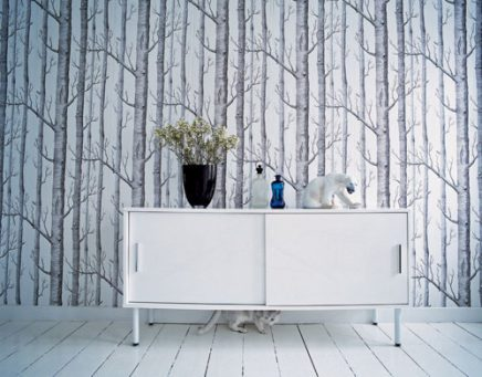birch wallpaper uk