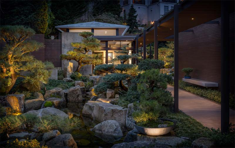 bonsai boom japanse tuin