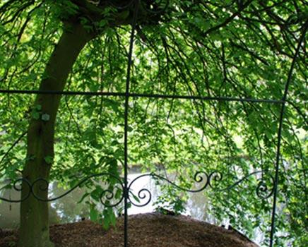 Perfecte Midsommar Tuin : Grote zonnige tuin in kralingen rotterdam inrichting huis