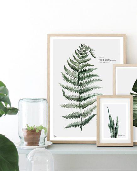 Botanische posters