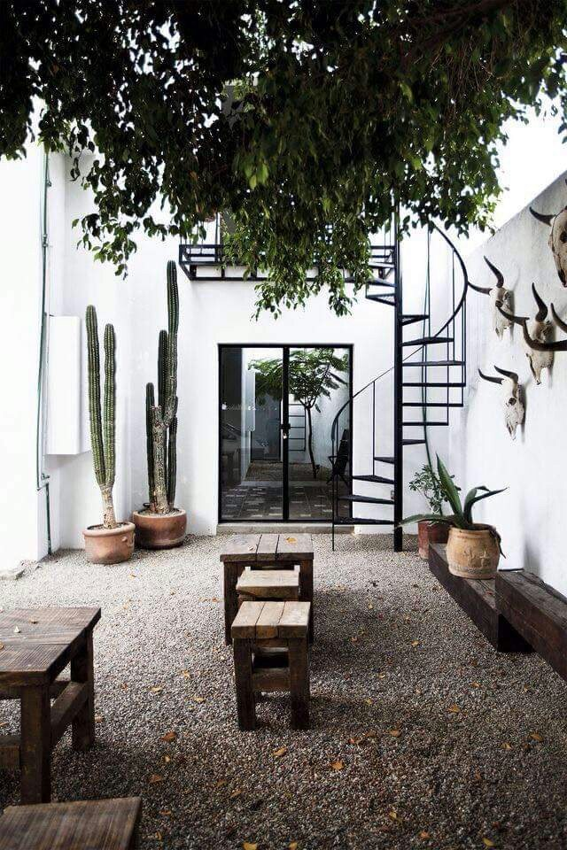 Cactussen in de tuin inrichting - Huis in de tuin ...