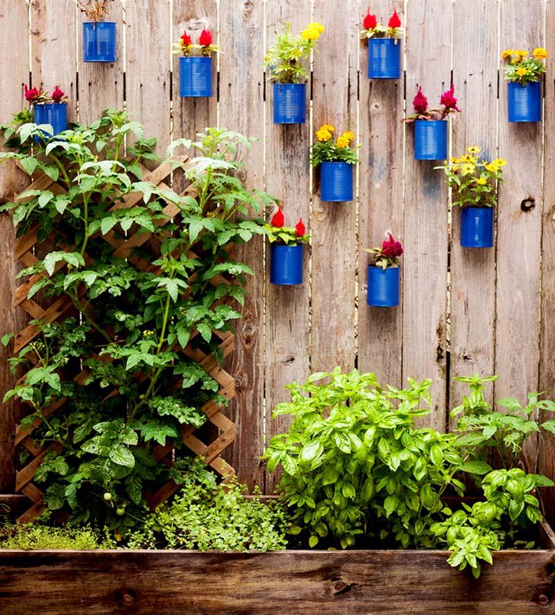 Conservenblikken als wand plantenpotten