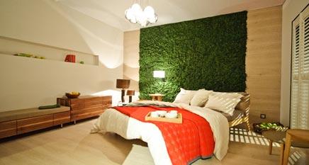 Creatief groen in je interieur met Evergreen
