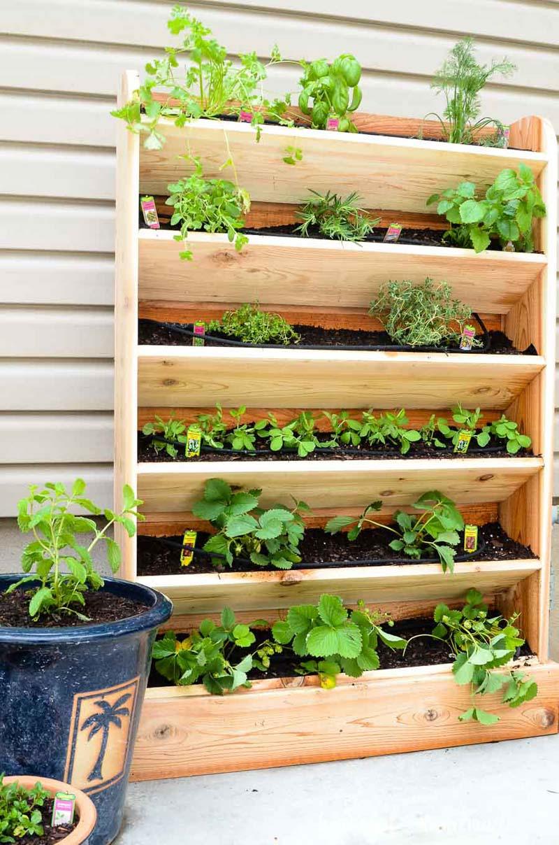 DIY verticale tuin met ingebouwde bewateringssysteem
