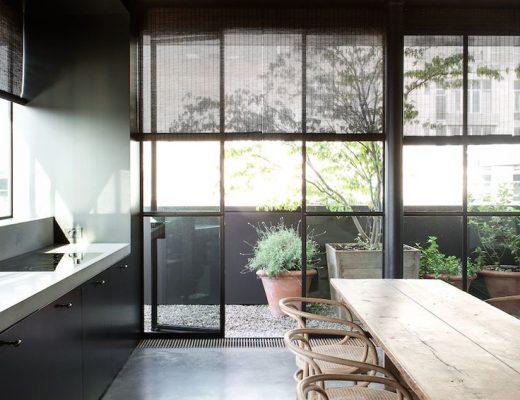 15x Eucalyptus Huis : Monstera deliciosa inrichting huis.com