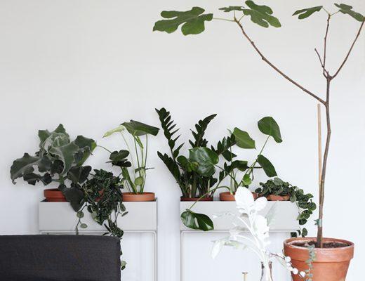 ferm-living-plantenbak