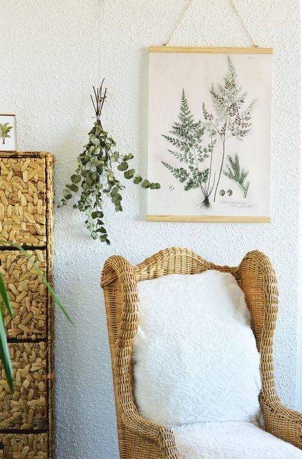 Eucalyptus in huis