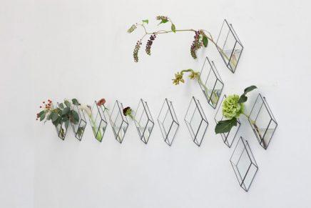 Glazen display doosjes aan de muur