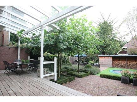 Grote zonnige tuin in Kralingen Rotterdam