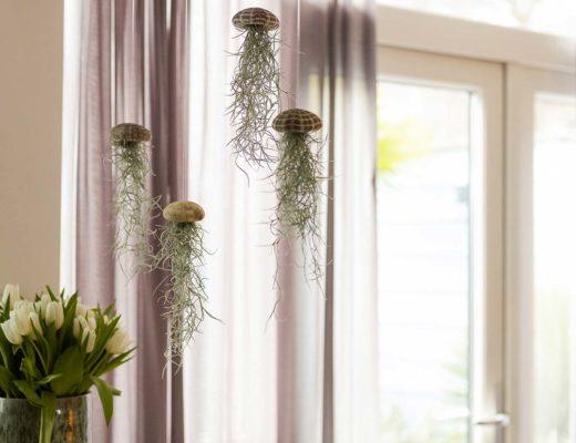 hangplanten voor binnen