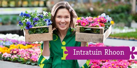 intratuin rhoon inrichting