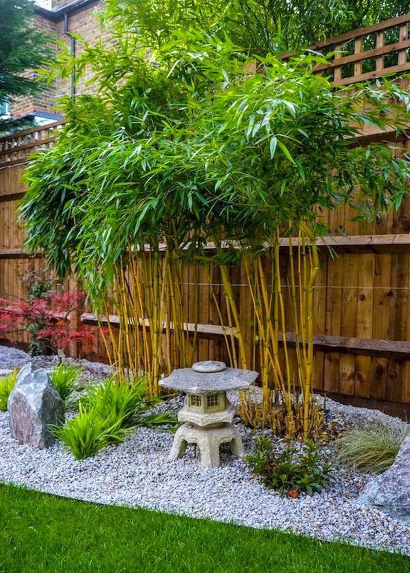japanse tuin bamboo
