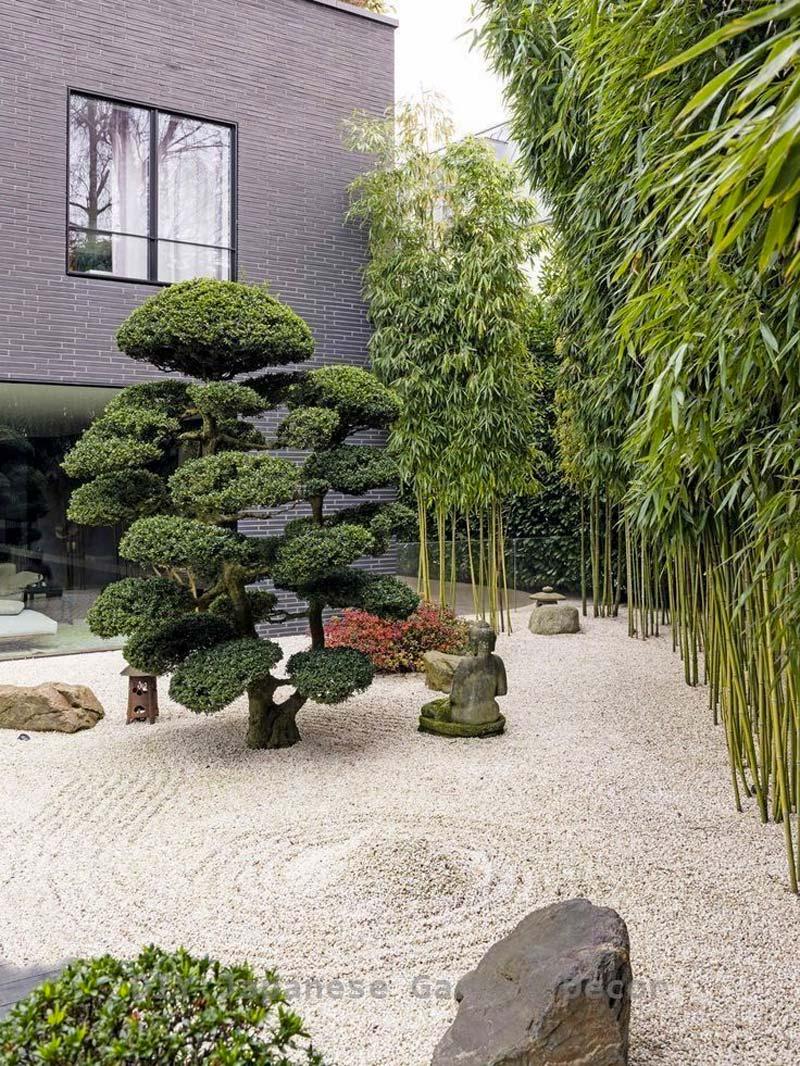 japanse tuin groen
