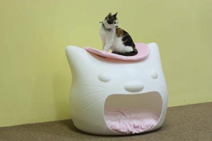 Kattenbank van Studio Mango