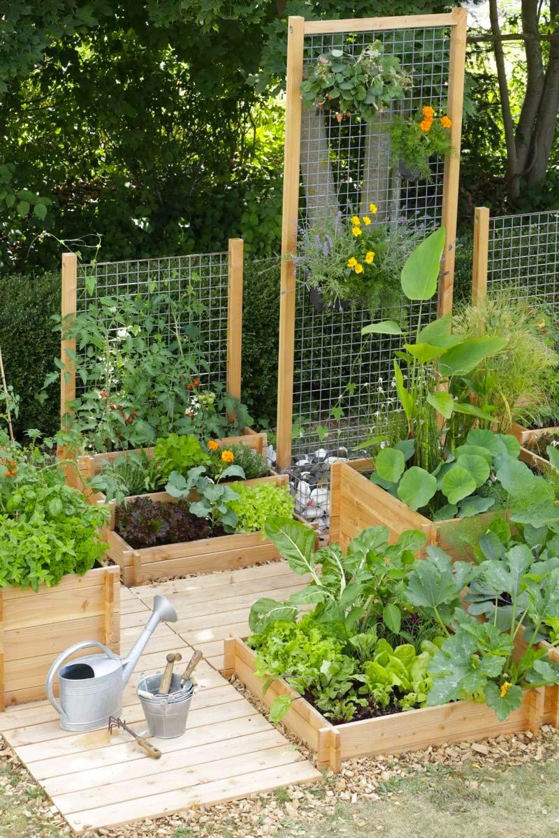 kindvriendelijke tuin moestuin