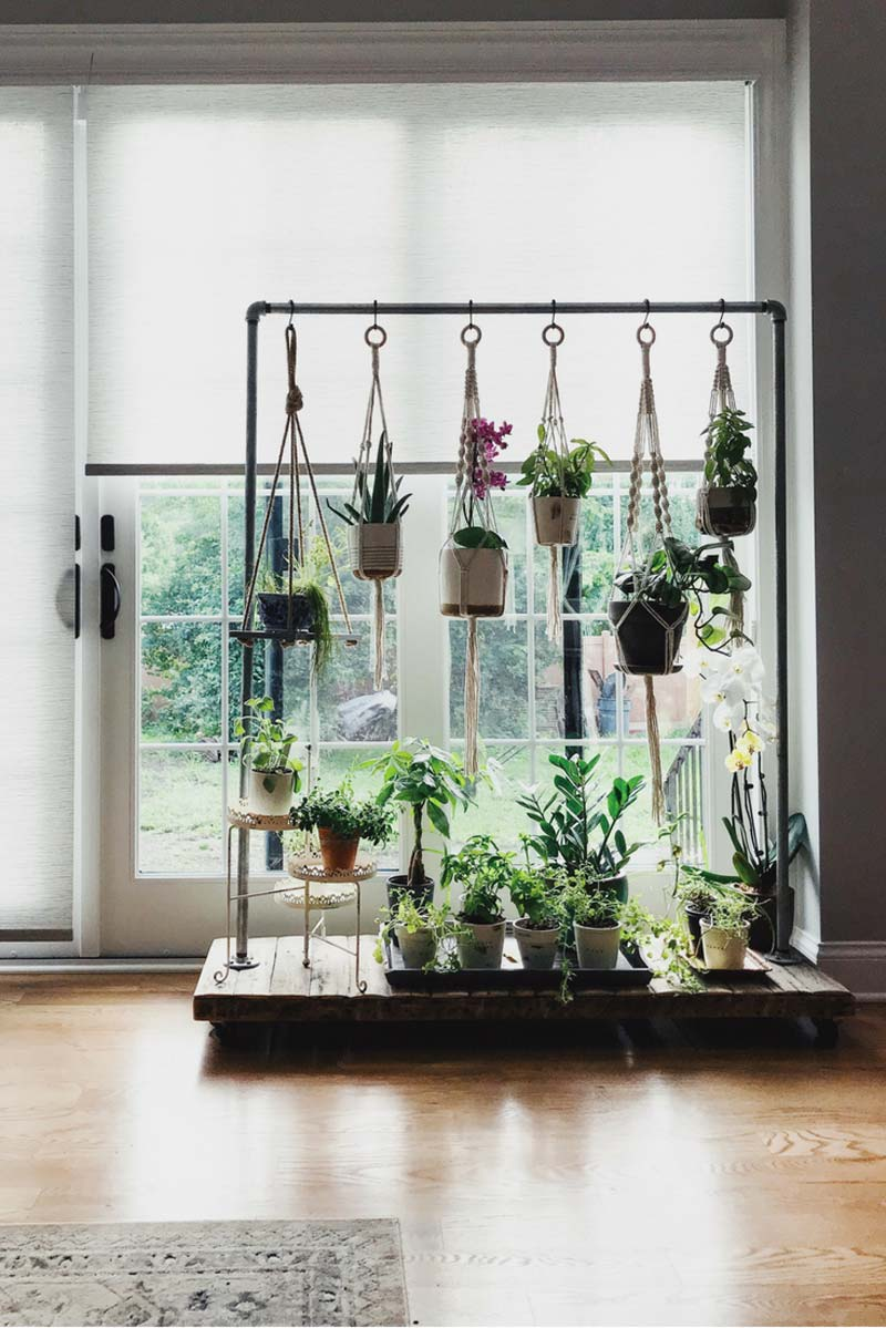 Kledingrek met planten