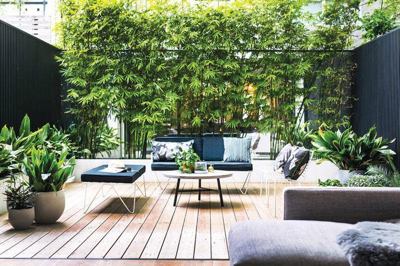 Kleine tuin met houten vlonders