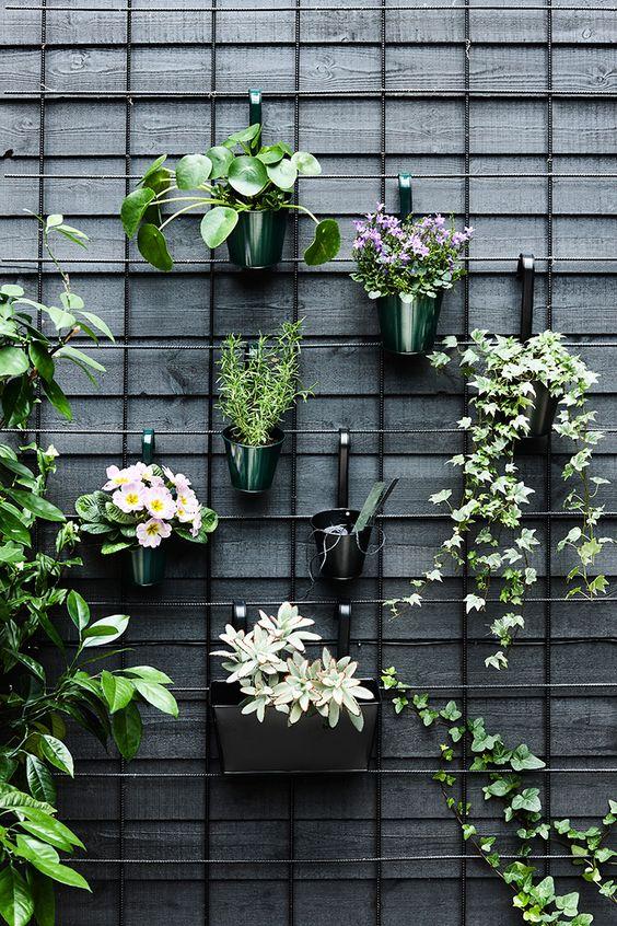 Klimrek Voor Planten.Klimrek Op Het Balkon Inrichting Huis Com