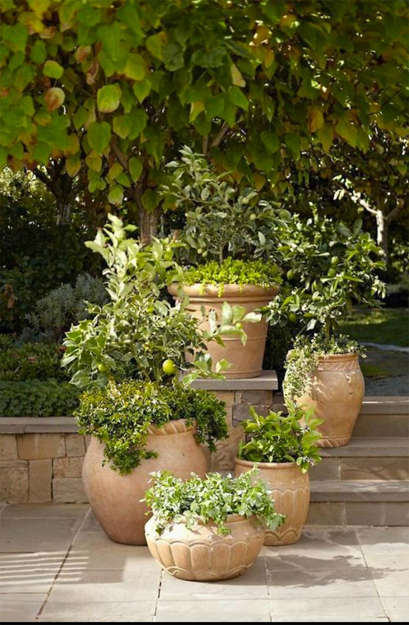 mediterrane tuin terracotta potten