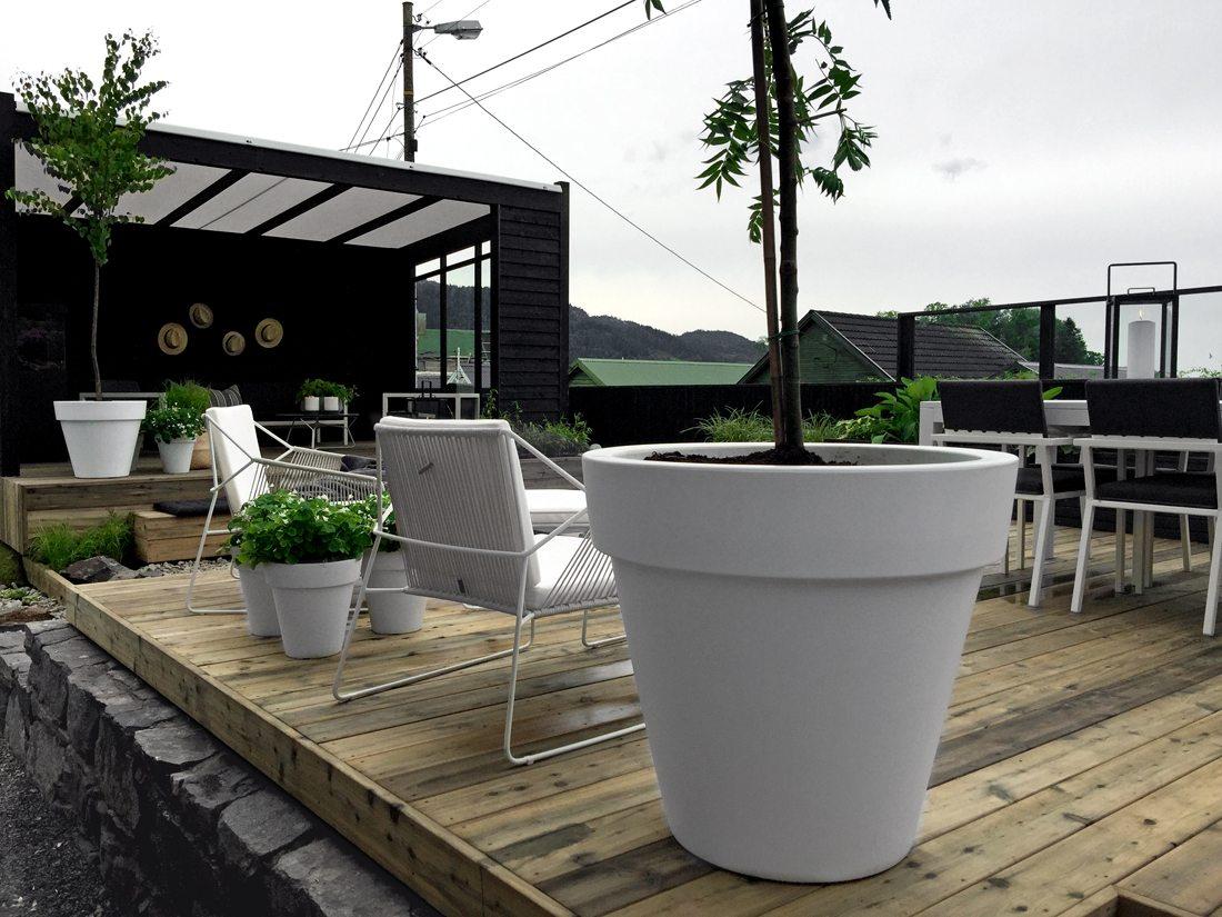 Moderne dynamische tuin met hoogteverschillen