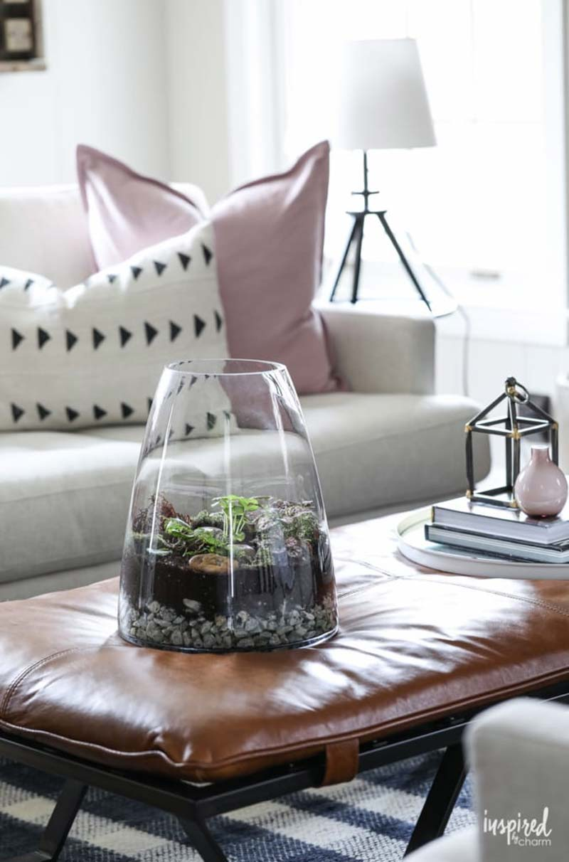 De mooie glazen open terrarium van Micheal.