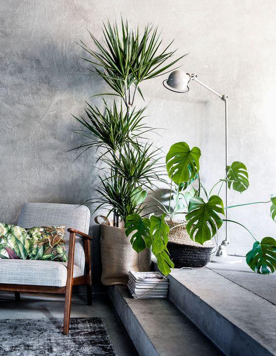 Mooie kunstplanten