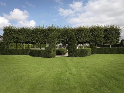 Mooie tuin in nog mooiere omgeving