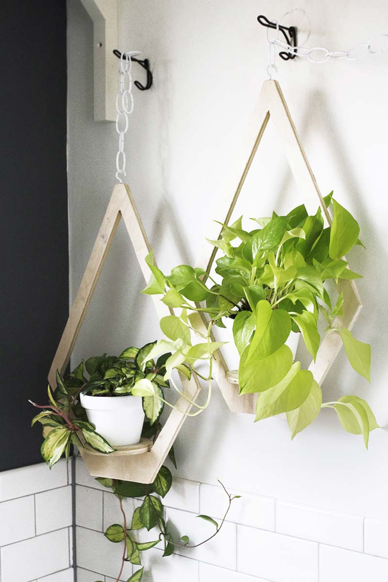 Multiplex planthangers