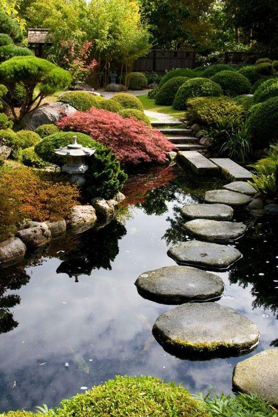 Natuurlijke tuinvijver