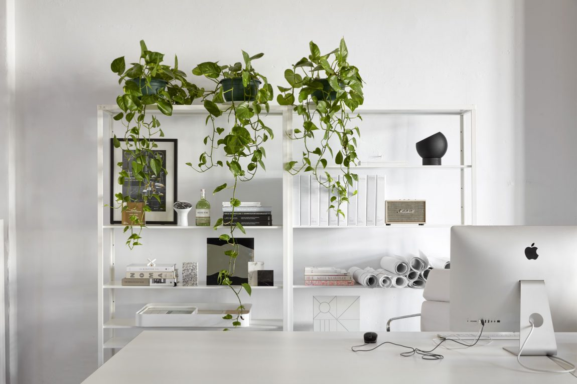 Het nieuwe kantoor van interieurdesign studio The Stella Collective