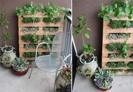 Pallet plantenrek