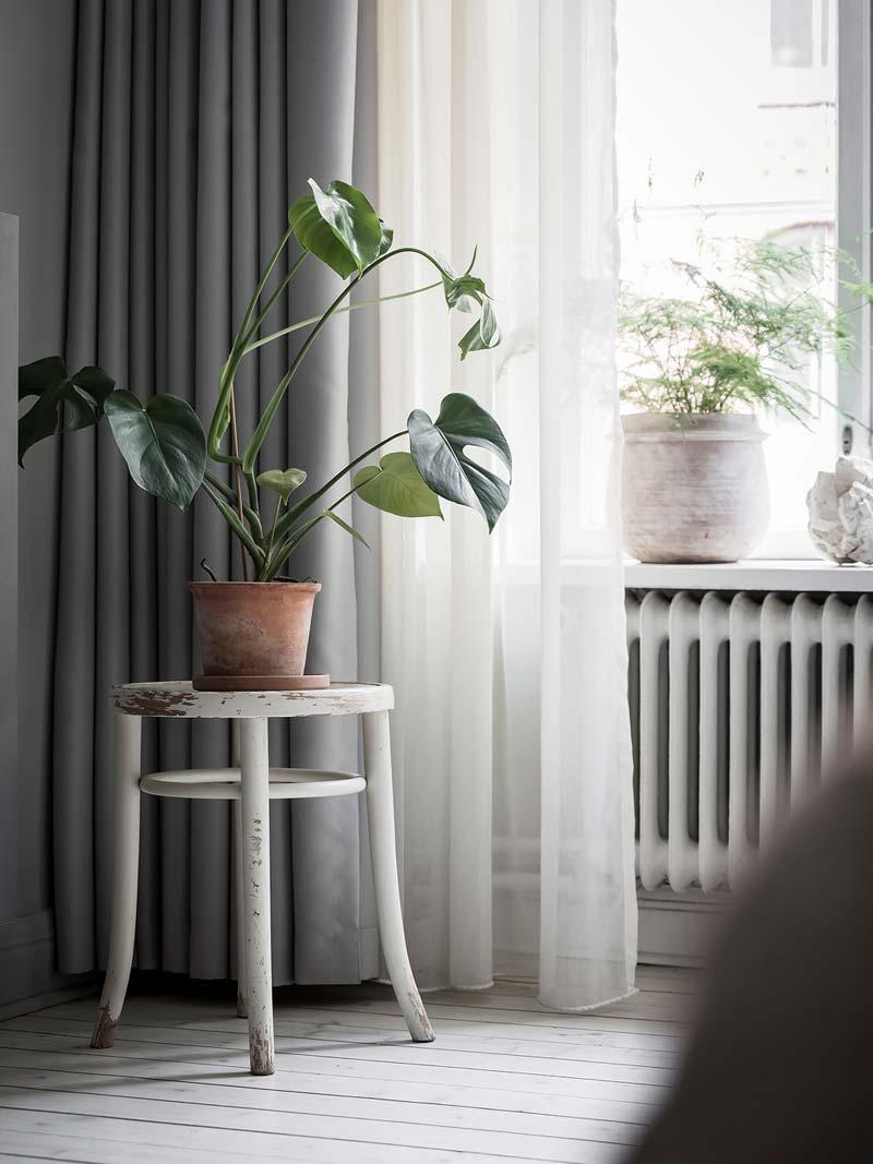plant op krukje