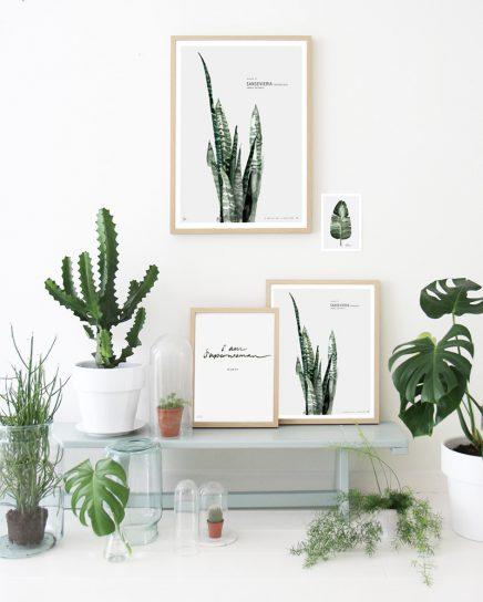 Planten posters