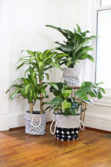 plantenbak 1