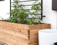 10x Plantenbak maken