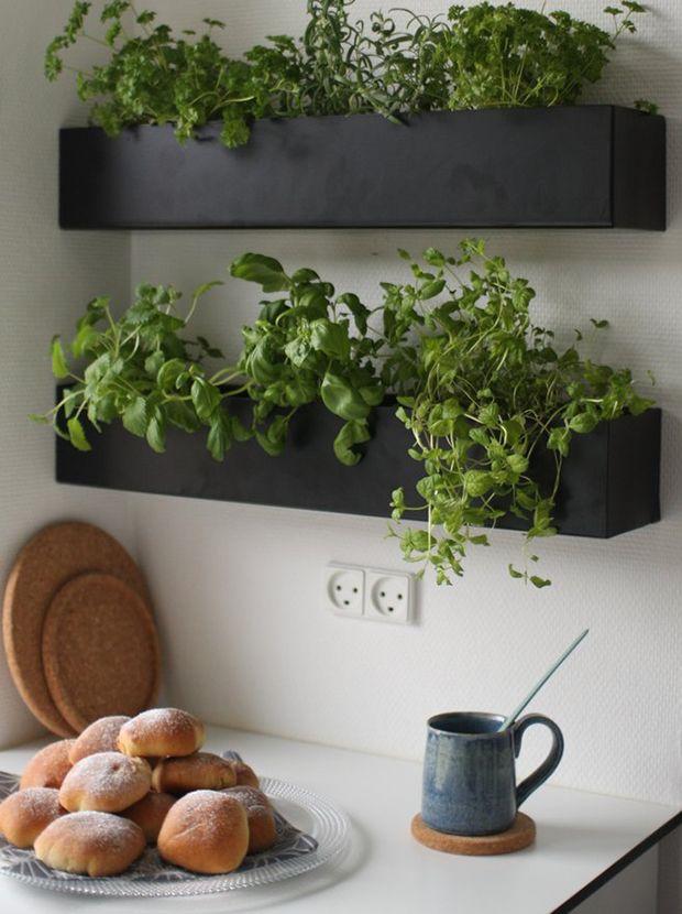plantenbakken aan muur