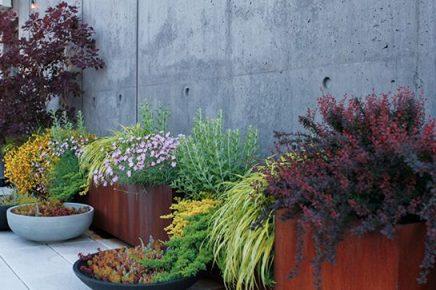 Plantenpotten op dakterras