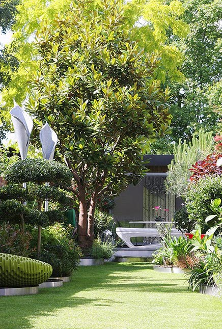 Smalle tuin met mooie beplanting
