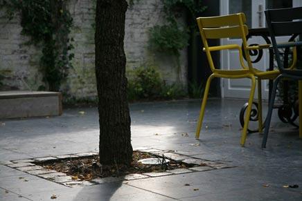 Stadstuin In Zaltbommel : Stadstuin in zaltbommel inrichting huis