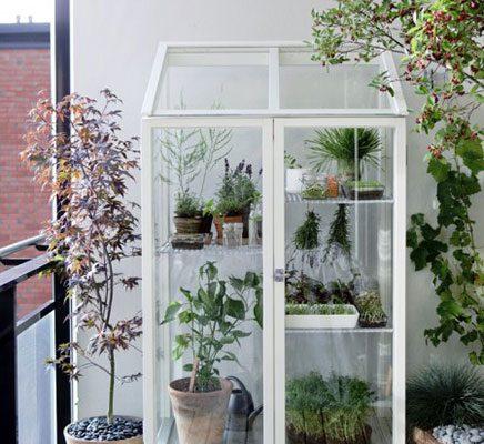 Telen en kweken op balkon