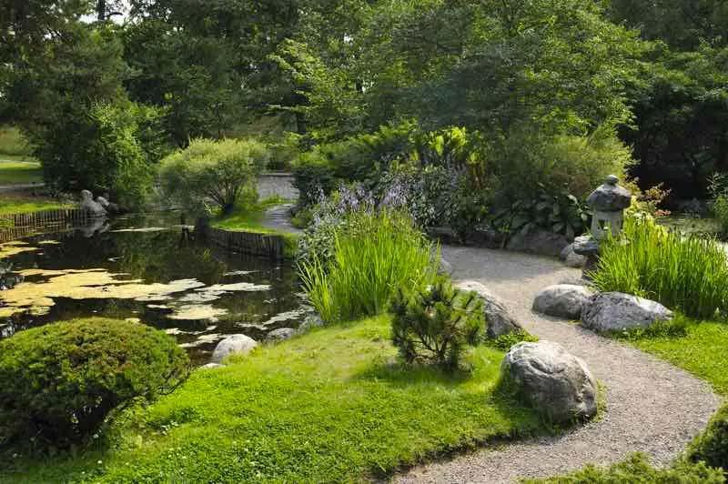 traditionele japanse tuin