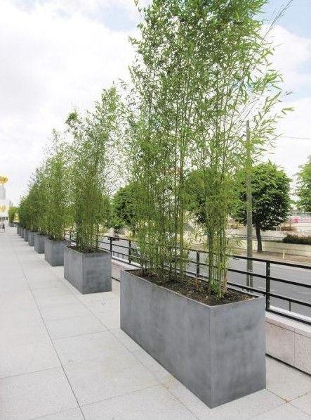 Tuin betonnen plantenbak ideeën