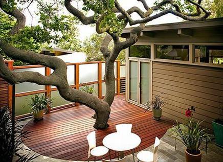Tuin idee wat te doen met een grote oude boom inrichting for Zen terras layouts