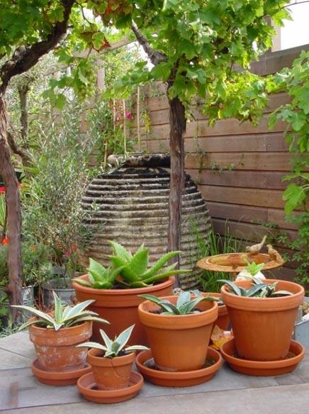 Tuin met mediterrane sfeer inrichting - Huis in de tuin ...