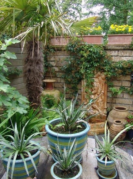 Tuin met mediterrane sfeer